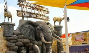 Enjoy Emirates Park Zoo during Eid Al Adha celebrations in the UAE.