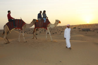 Desert Safari is the answer on question what to do in Ajman