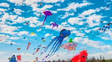 kite festival 2020 Dubai