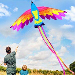 Phoenix Kite Dubai Kite Festival 2020