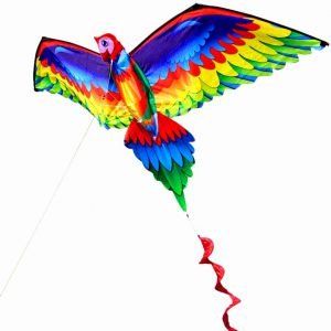 Parrot Kite with Tail Dubai Kite Festival 2020