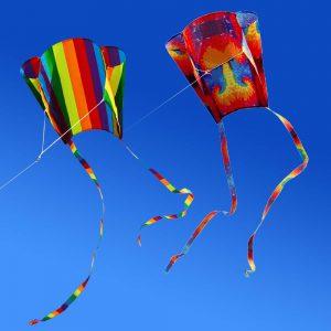Colourful Parafoil Kite Dubai Kite Festival