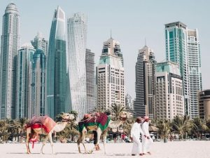 Things to do in Dubai during World Expo