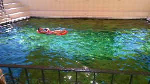 Khatt Springs id one of the things to do in Ras Al Khaimah UAE