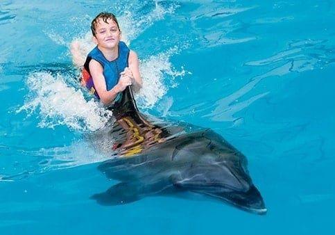Dubai Dolphinarium 2020
