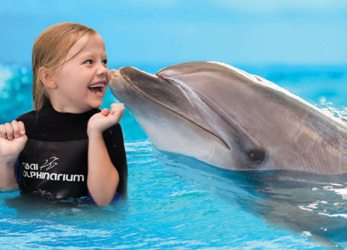 Dubai Dolphinarium may be the best nature therapy for 2020