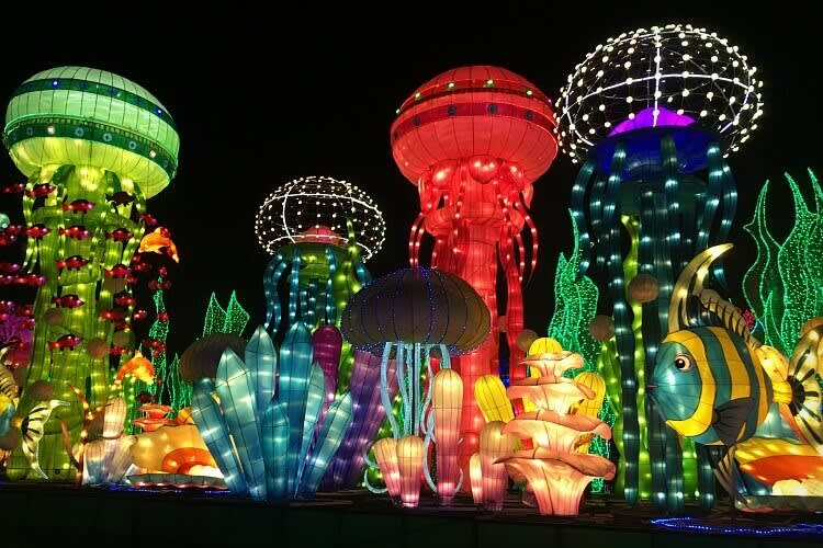 Dubai Garden Glow is one of the top parks in Dubai